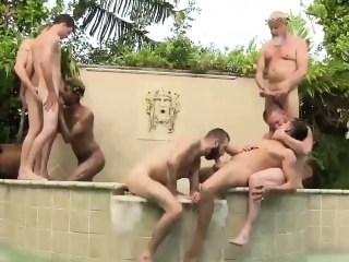 daddies (gay) blowjob (gay)